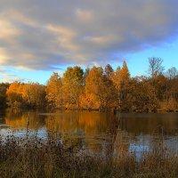 Осень в Ильицино :: Виктор Вуколов