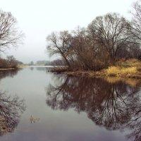 Не в силах жить рекою отраженья... :: Лесо-Вед (Баранов)