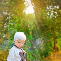 Осенние лучи... :: Анна Гаркуша