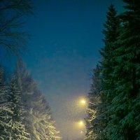 Первый снег :: Наталья Новикова