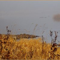 Река, туман... :: Cerg Smith