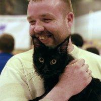 чёрный кот :: Александр Корнелюк