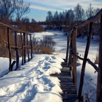 Зима близко :: Y Laskina