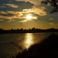 Золотистый закат :: Екатерина