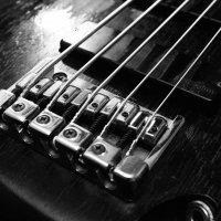 Bass :: Дмитрий Николаев