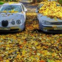 Осенний драйв :: M Marikfoto