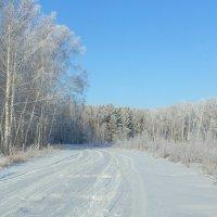 Зимний день. :: Kassen Kussulbaev