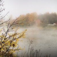 туман :: юрий иванов