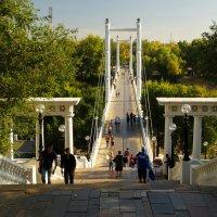 Мост между Европой и Азией. :: Elena Izotova