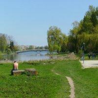 Городское  озеро  в  Ивано - Франковске :: Андрей  Васильевич Коляскин