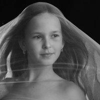 Девочка под вуалью :: Римма Алеева
