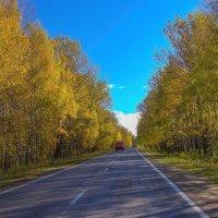 Ярославская область.Осенние дороги :: Бронислав Богачевский