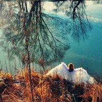 ...... :: photographer Anna Voron