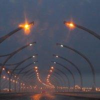 Нарядный путь домой.... :: Tatiana Markova