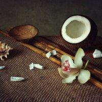 Про кокос, орхидею и бамбук :: Ирина Приходько