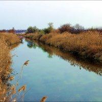 Река :: Татьяна Пальчикова
