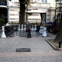 на шахматном поле... :: Людмила
