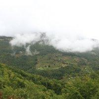 Внизу в долине живут люди :: Marina Talberga