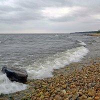 Камень на берегу :: Анатолий Цыганок