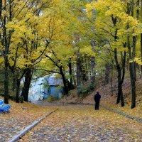 Дорога в осень :: Валентина Данилова