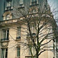 Париж((( :: Galina Belugina