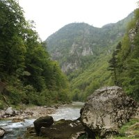 Река Тара :: Marina Talberga