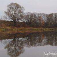 Осень :: Надежда Горошко