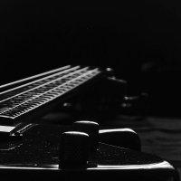 Гитара 2 :: Svetlana Baglai