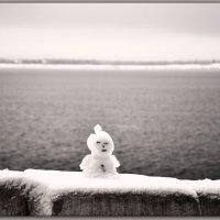 снеговичек  на набережной Волги. :: Юрий Ефимов