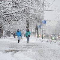 Снегопад :: Рудаков Сергей