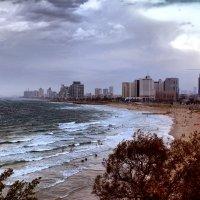 Тель-Авив осень :: Валерий Баранчиков