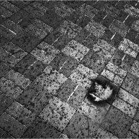 Печать Осени... :: Беспечный Ездок