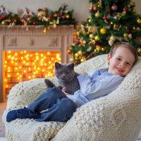 Жизнь без кота-не та :: Виктория