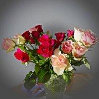 И каждый раз, при виде нежных роз Душа не устает им поражаться... :: Galina Dzubina