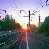 Дорога к Солнцу :: Владимир