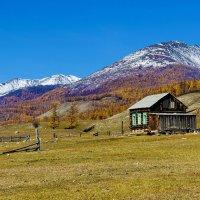 Одинокий домик :: Анатолий Иргл