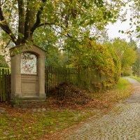 Осенний этюд :: Waldemar .
