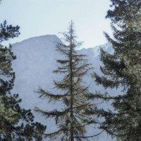 Вершины :: Леонид Сергиенко