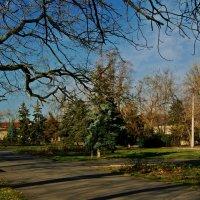осень в сквере :: Александр Корчемный
