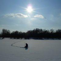 Рыбак одиночка. :: Александр Атаулин