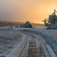 Морозное утро :: Сергей Радин