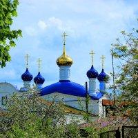 Голубые купола. :: Николай Крюков