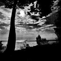 Ночь на озере :: Виктор Истомин