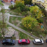 Последние листья опадают :: Валерий Дворников