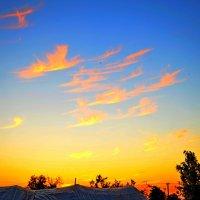 Небесные лебеди :: Виктор Шандыбин