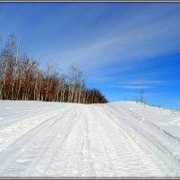 Зима уж... :: Андрей Заломленков