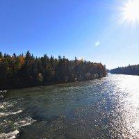 Солнечная река ... :: Владимир Икомацких