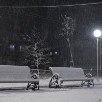 падал прошлогодний снег... :: ирина