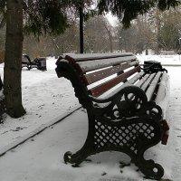 в зимнем парке :: Надежда Ерыкалина