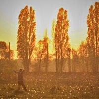 Солнечный танец. :: Gamza ..